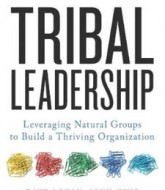 Download 'Tribal Leadership: Leveraging Natural Groups to Build a Thriving Organization' By Dave, John & Halee PDF Ebook